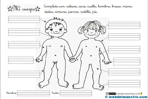 Partes del cuerpo para niños
