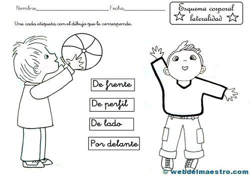 Esquema corporal-5