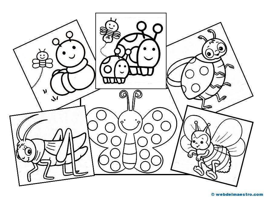 Dibujos De Insectos Para Colorear Para Ninos: Dibujos De Animales (Insectos)