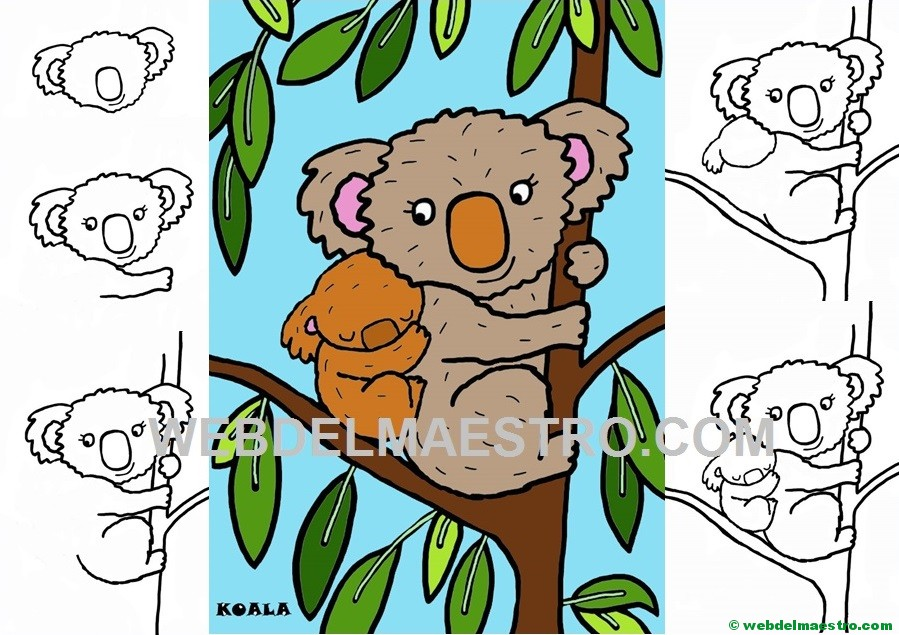 Como Dibujar Un Koala Web Del Maestro