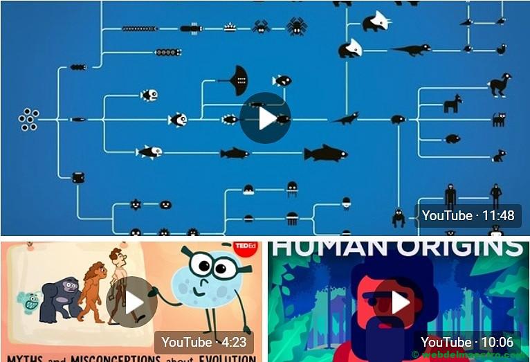 Vídeos educativos sobre la teoría de la evolución